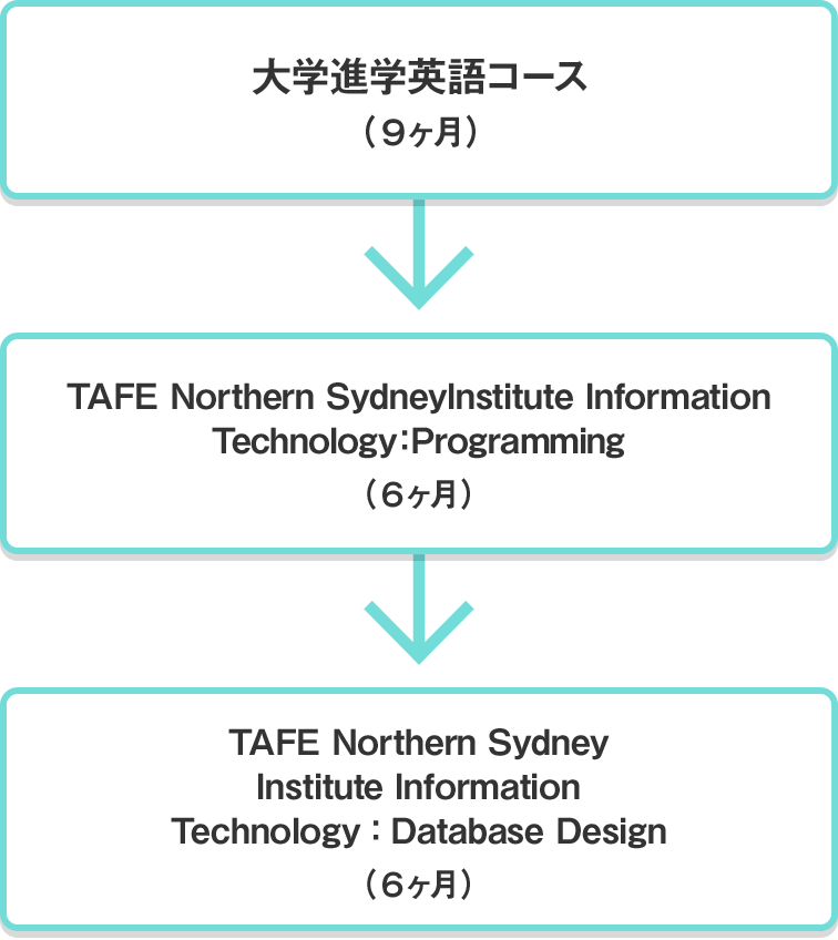 大学進学英語コース(9ヶ月) TAFE Northern Sydney Institute Information Technology:Programming(6ヶ月) TAFE Northern Sydney Institute Information Technology:Database Design(6ヶ月)